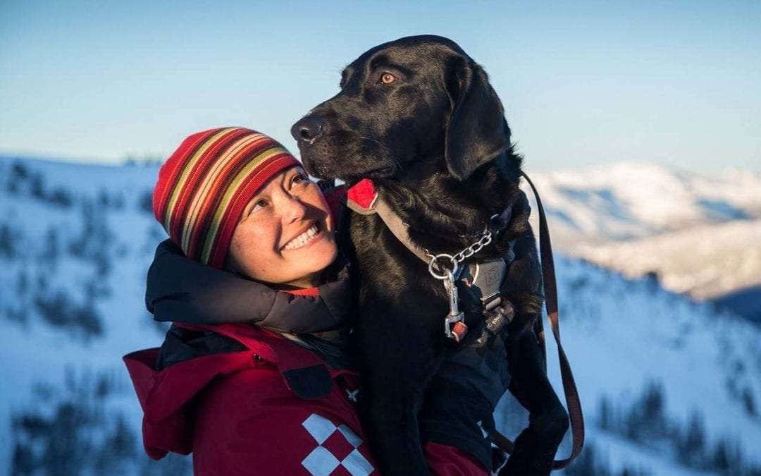 SARS dog Rory and Handler Janet talk about why they choose Raw Food for Dogs